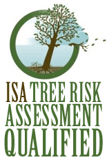 s-tree-risk-assessment-qualified-copy